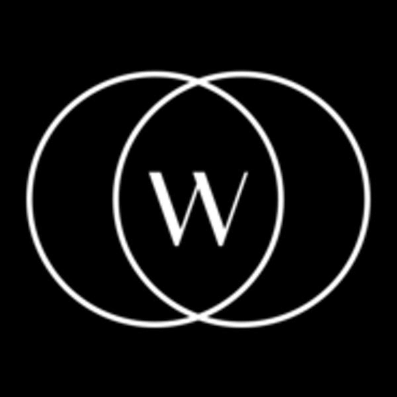 Logo de Wishi, nuestro estilista personal.