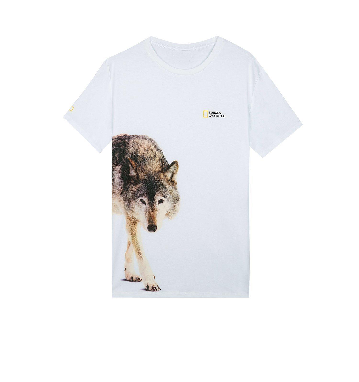 Camiseta National Geographic x Bershka