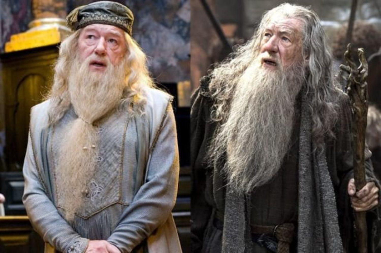 Gandalf y Dumbledore, dos barbas idénticas.